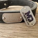 Dog Tag Flush mounted on collar with rivets (Instagram)