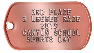 Bronze Medal Medallion    3RD PLACE  3 LEGGED RACE      2019  CANYON SCHOOL   SPORTS DAY