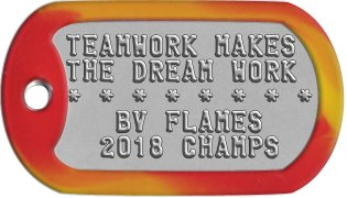 Team Player Dog Tags TEAMWORK MAKES THE DREAM WORK * * * * * * * *    BV FLAMES   2018 CHAMPS