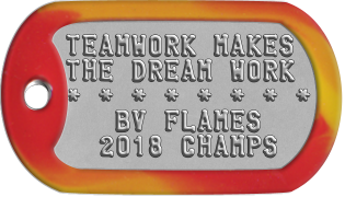 Team Player Dogtags TEAMWORK MAKES THE DREAM WORK * * * * * * * *    BV FLAMES   2014 CHAMPS